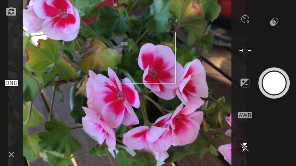 KAMERA-APPEN: Slik er skjermbildet i Lightroom Mobile-kameraappen. Merk DNG-symbolet til venstre. Her kan man velge mellom DNG- og JPEG-format under fotograferingen.